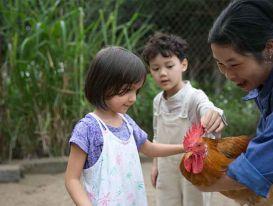 Những lợi ích không thể bỏ qua khi trẻ thường xuyên tiếp xúc với động vật
