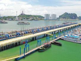 Đội tàu du lịch Quảng Ninh 'ngắc ngoải' chờ chính sách giải cứu