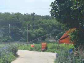 Bắc Giang áp dụng giãn cách xã hội tại huyện Lạng Giang từ 12 giờ ngày 10-6