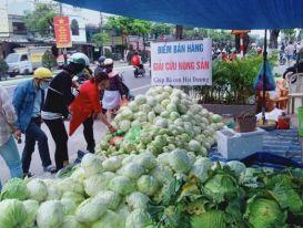 Tình nguyện viên Đà Nẵng giải cứu hàng trăm tấn nông sản Hải Dương