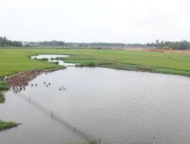Sau nâng cấp, mở rộng Quốc lộ 1A qua Bình Định: Dân mòn mỏi chờ bồi thường
