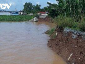 Cần khắc phục khẩn cấp vụ lở ' hàm ếch' tại cồn Phú Đa